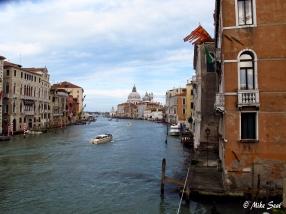 The elegant decay of Venice
