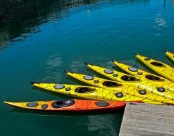 IMG_8800 Kayaks 14 x 11