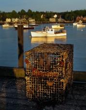 IMG_8990 - Lobster fishing gear 11 x 14
