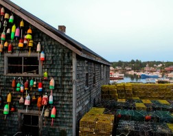 IMG_9330 SW Harbor Lobstermans' Buoys 14 x 11